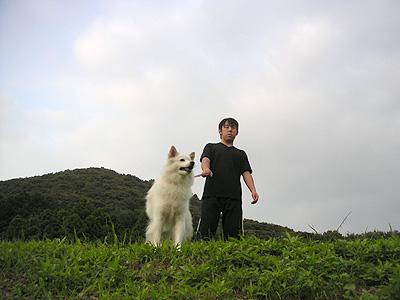 CMの様な犬と少年