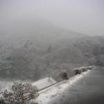 雪の三ツ口池