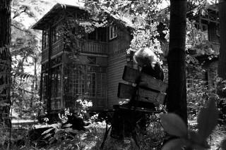 木洩れ日の家で