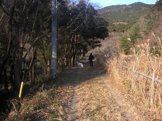 三ツ口池 舗装前の道