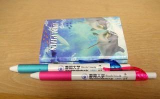 「しずっぴー」のポールペン